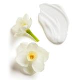 Nu Skin - Perennial - 250 ml - Body Spa - Beauty - Professional Spa Equipment