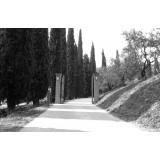 Massimago Wine Relais - Valpolicella Relax Experience - 3 Giorni 2 Notti