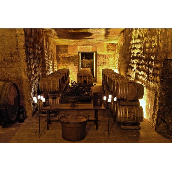 Conte Spagnoletti Zeuli - Tour Onofrio - Visita Guidata Cantina del XVIII, Stabilimento Oleario, Vigneti e Oliveti - In Giornata