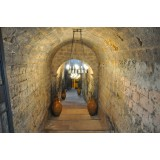 Conte Spagnoletti Zeuli - Tour Zeuli - Guided Tour of the XVIII Cellar, Olive Oil Plant, Vineyards and Olives - Daily