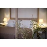 Furnirussi Tenuta - Wellness - 4 Days 3 Nights