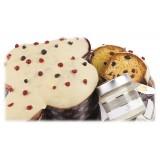 Vincente Delicacies - Colomba Artigianale - Frutti di Bosco, Cioccolato Bianco e Crema Spalmabile  - Ensamble - Pacco Regalo