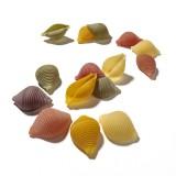 Dalla Costa - Conchiglie Five Colours