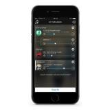 Audio Pro - Addon C5 - Grigio - Altoparlante di Alta Qualità - WLAN Multi-Room - Airplay, Stereo, Bluetooth, Wireless, WiFi