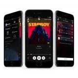 Audio Pro - Addon C5 - Grey - High Quality Speaker - WLAN Multi-Room - Airplay, Stereo, Bluetooth, Wireless, WiFi