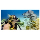 GoPro - Filtro per Immersioni in Acqua Blu per Super Suit - Accessori GoPro