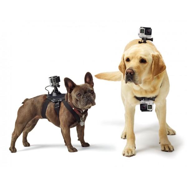 GoPro - Fetch - Imbracatura per Cani - Accessori GoPro