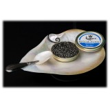 Royal Food Caviar - Reale - Caviale Oscetra - Storione Russo - 50 g