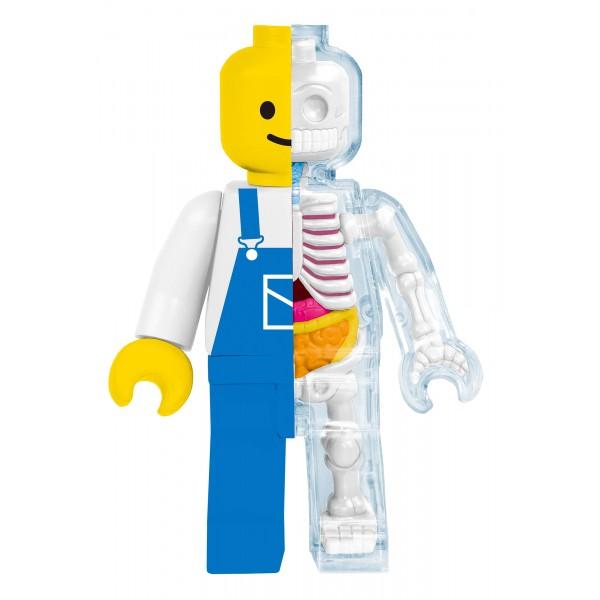 Fame Master - Small Brick Man - Worker - 4D Master - Mighty Jaxx - Jason Freeny - Body Anatomy - XX Ray - Art Toys