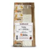 Molino Bertolo - Farina ai Cinque Cereali - 1 Kg