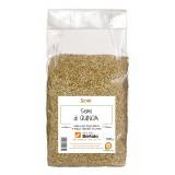 Molino Bertolo - Semi di Quinoa - 500 g