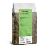 Molino Bertolo - Semi di Zucca - 500 g