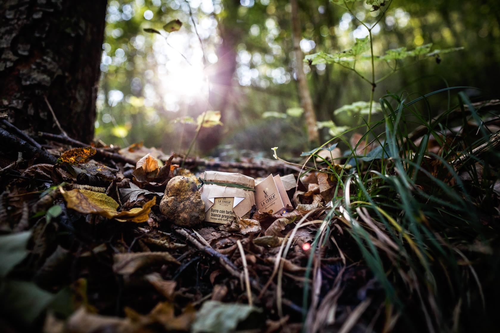 La cerca tartufi biologici 2 avvenice for All origine arredi autentici